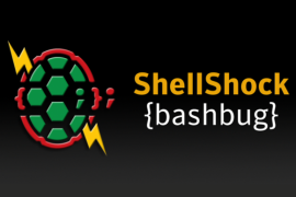 Mayhem – Sophisticated Malware Infecting Linux through Shellshock Exploits