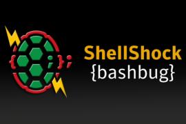 Mayhem – Sophisticated Malware Infecting Linux through Shellshock Exploits