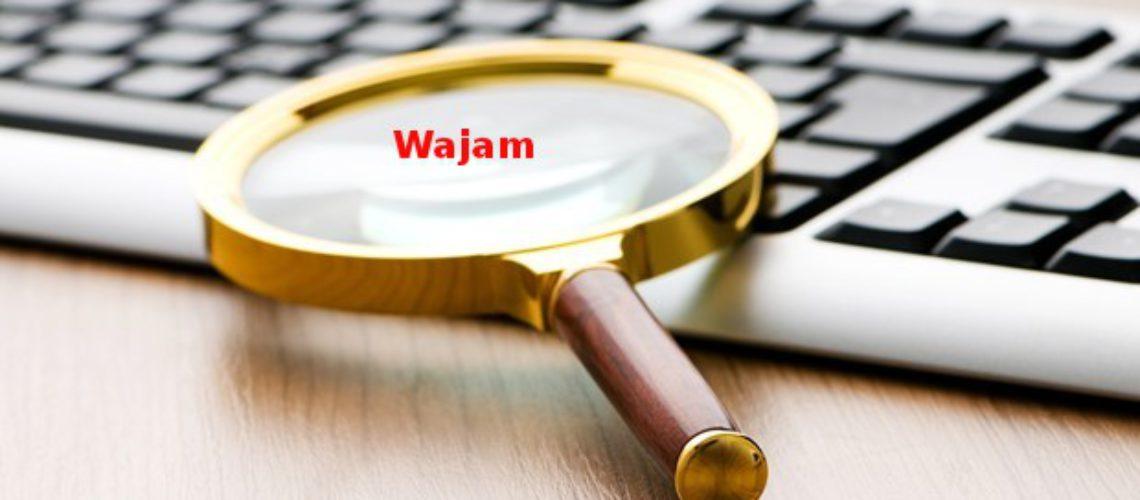 Sådan fjernes Wajam fra din PC?